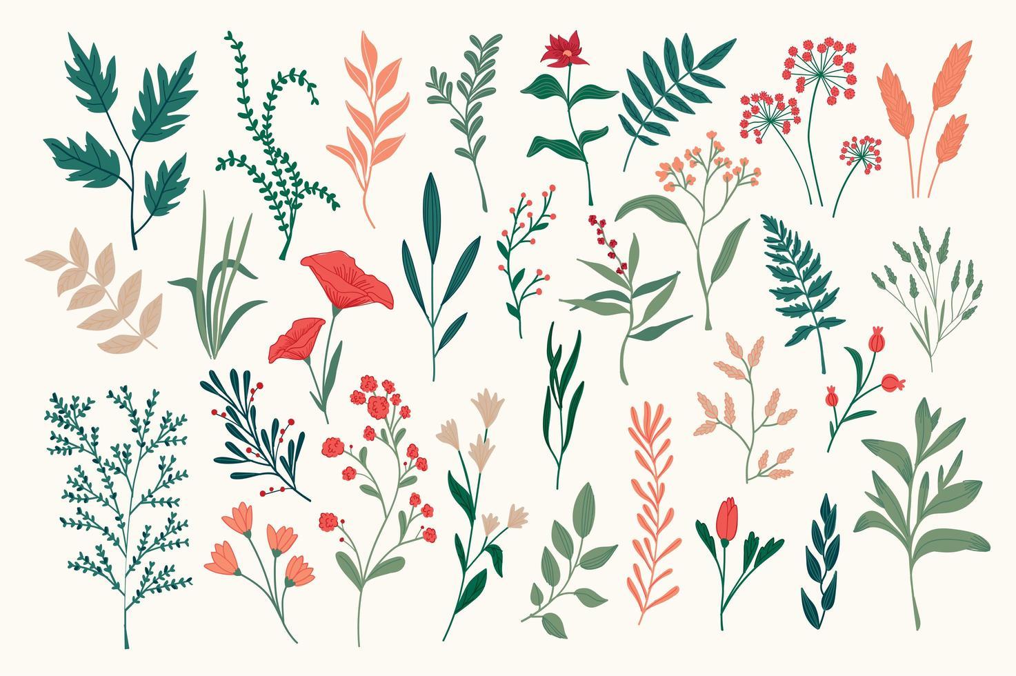 conjunto de objetos florais desenhados à mão vetor
