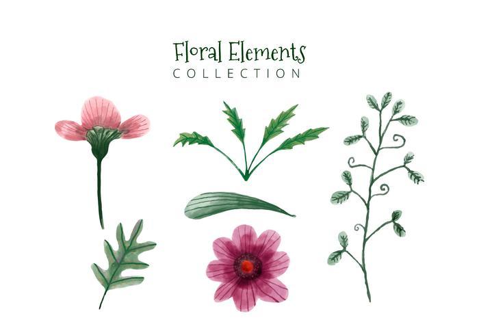 Flores bonitas da aguarela e flores verdes e folhas de coleção vetor