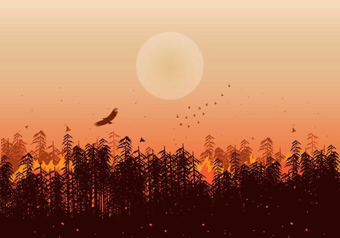 Fogo da floresta Ilustração Silhueta Vector
