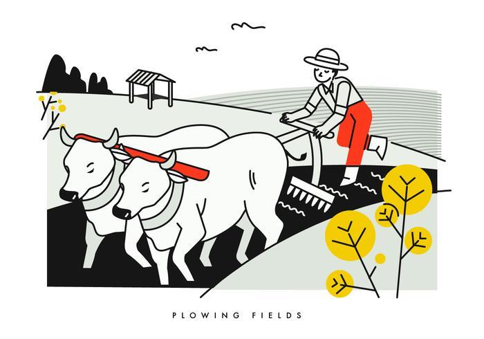 Campos de fluxo de camponeses com ilustração vetorial de Buffalo vetor