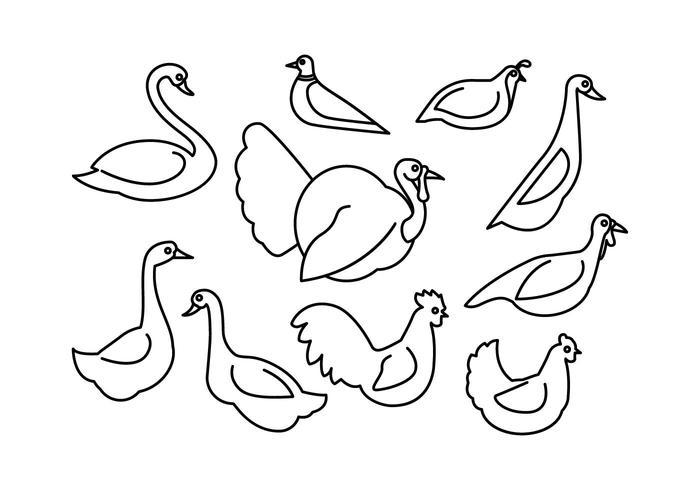 Vector de ícone de linha de aves de capoeira grátis