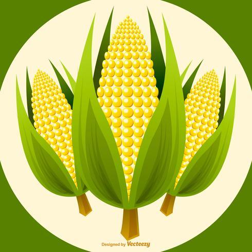 Vector Ilustração de Stalk de milho