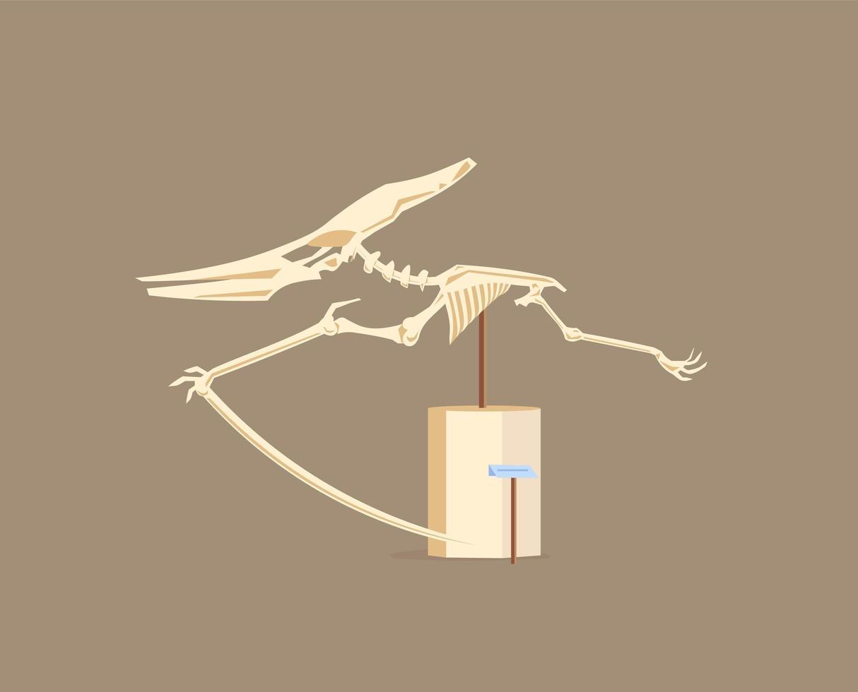 exposição de vitrine de pterodáctilo vetor