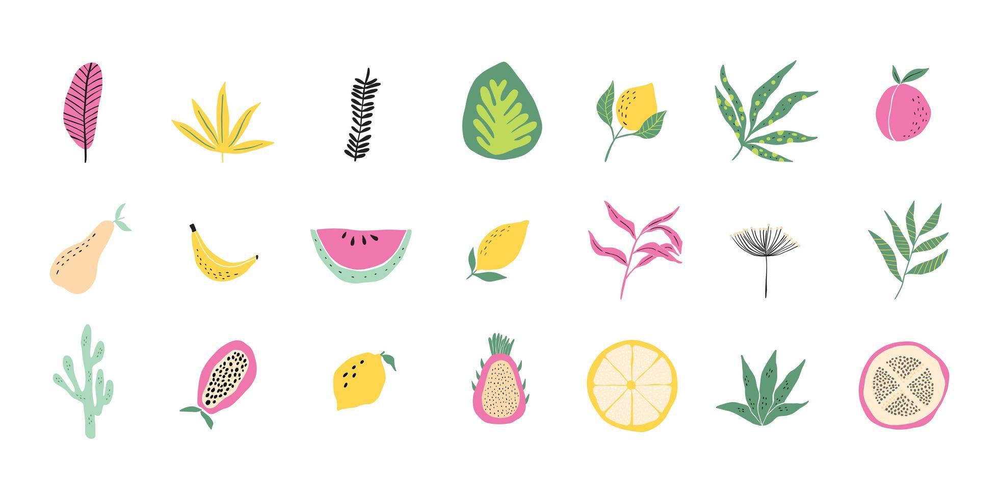 coleção contemporânea de frutas tropicais e folhas da floresta vetor