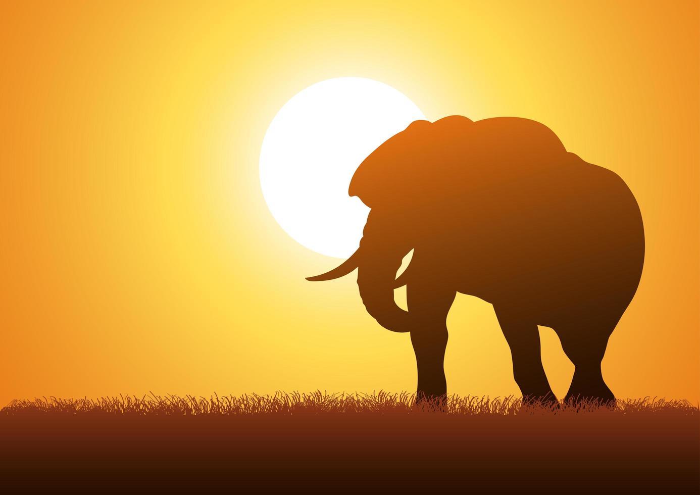 vetor silhueta de elefante