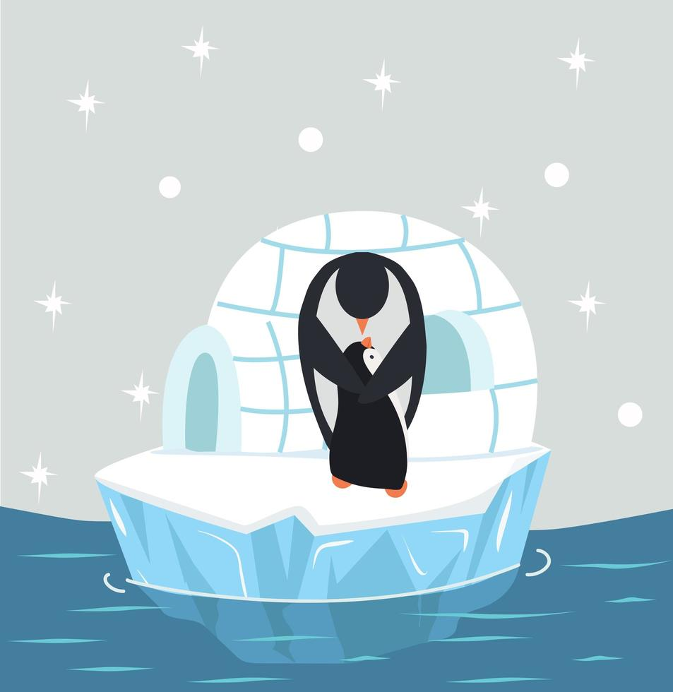 pinguim fofo mãe e bebê com iglu de gelo vetor