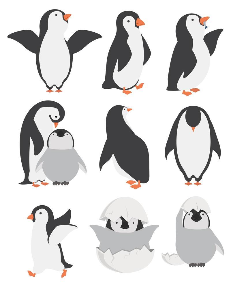 personagens de pinguins e garotas felizes em diferentes poses vetor