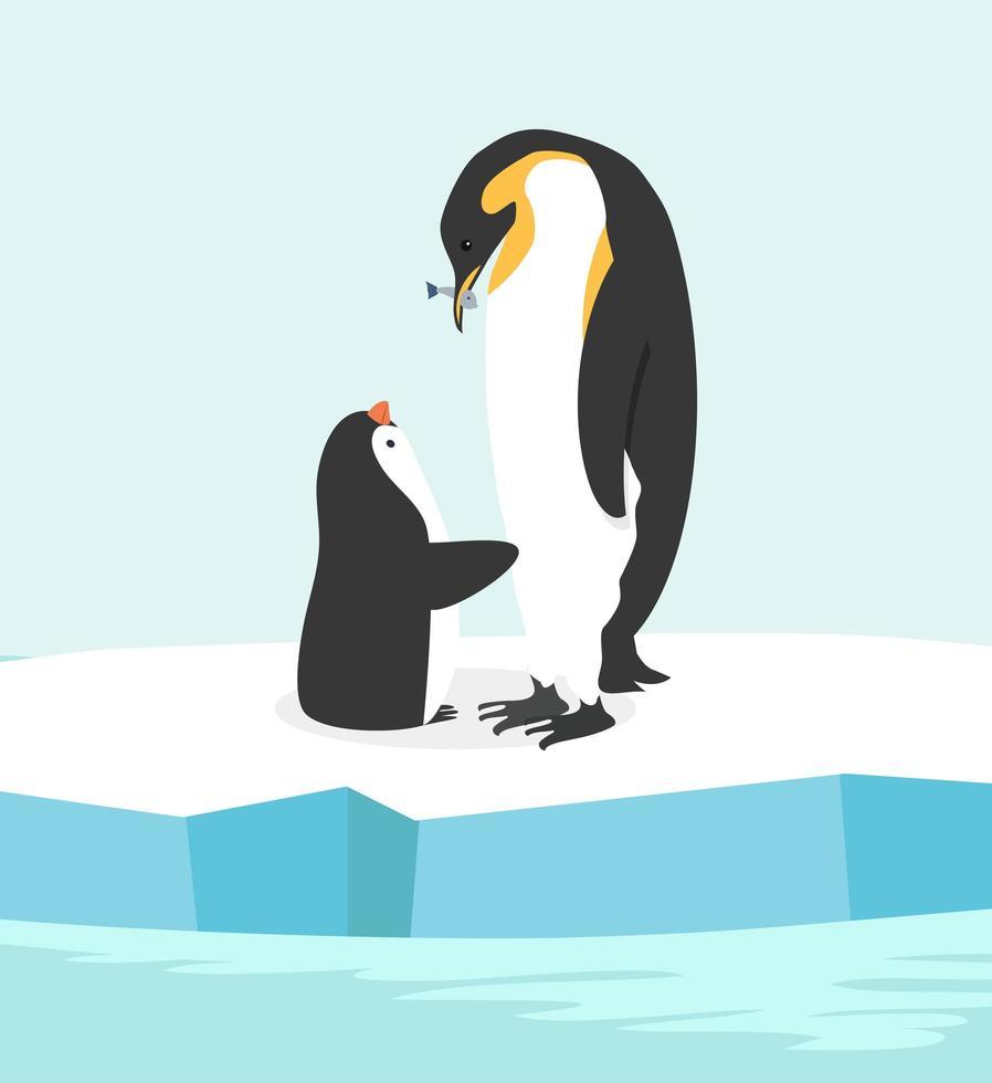 mãe pinguim alimentando seu bebê no pólo norte vetor
