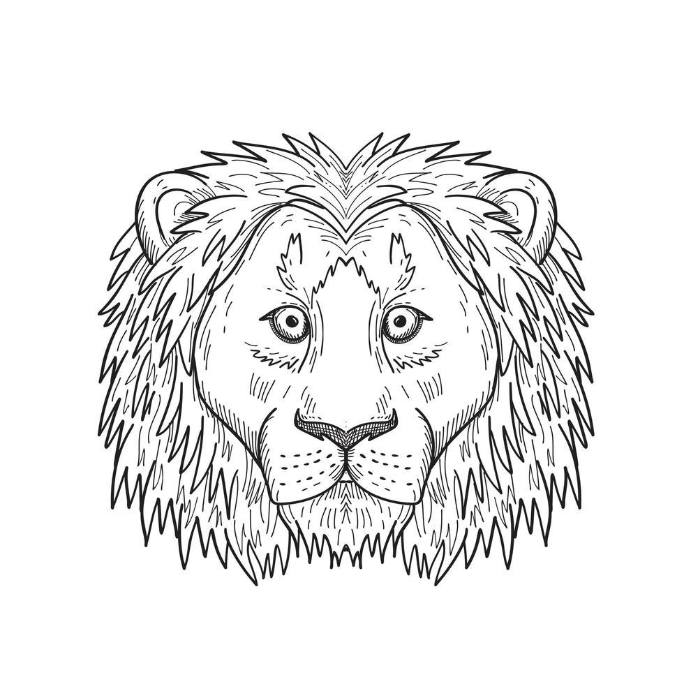 cabeça de um covarde e um leão assustado vista frontal desenho preto e branco vetor