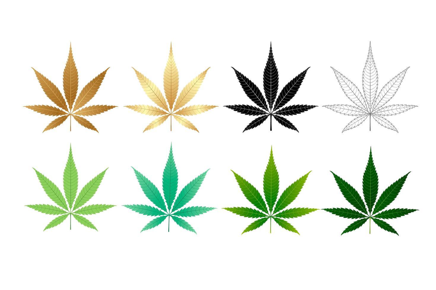 Conjunto de ícones de folhas de cânhamo vetor