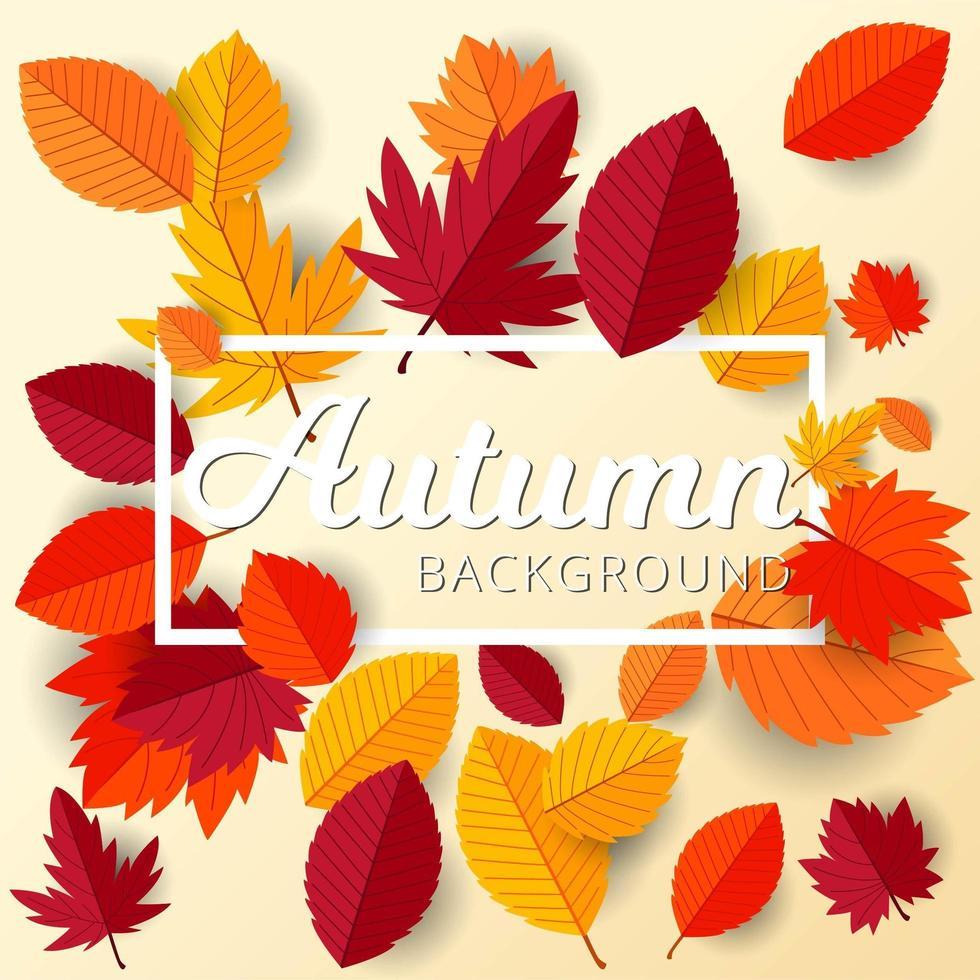 quadro de outono com fundo de design de folhas planas vetor