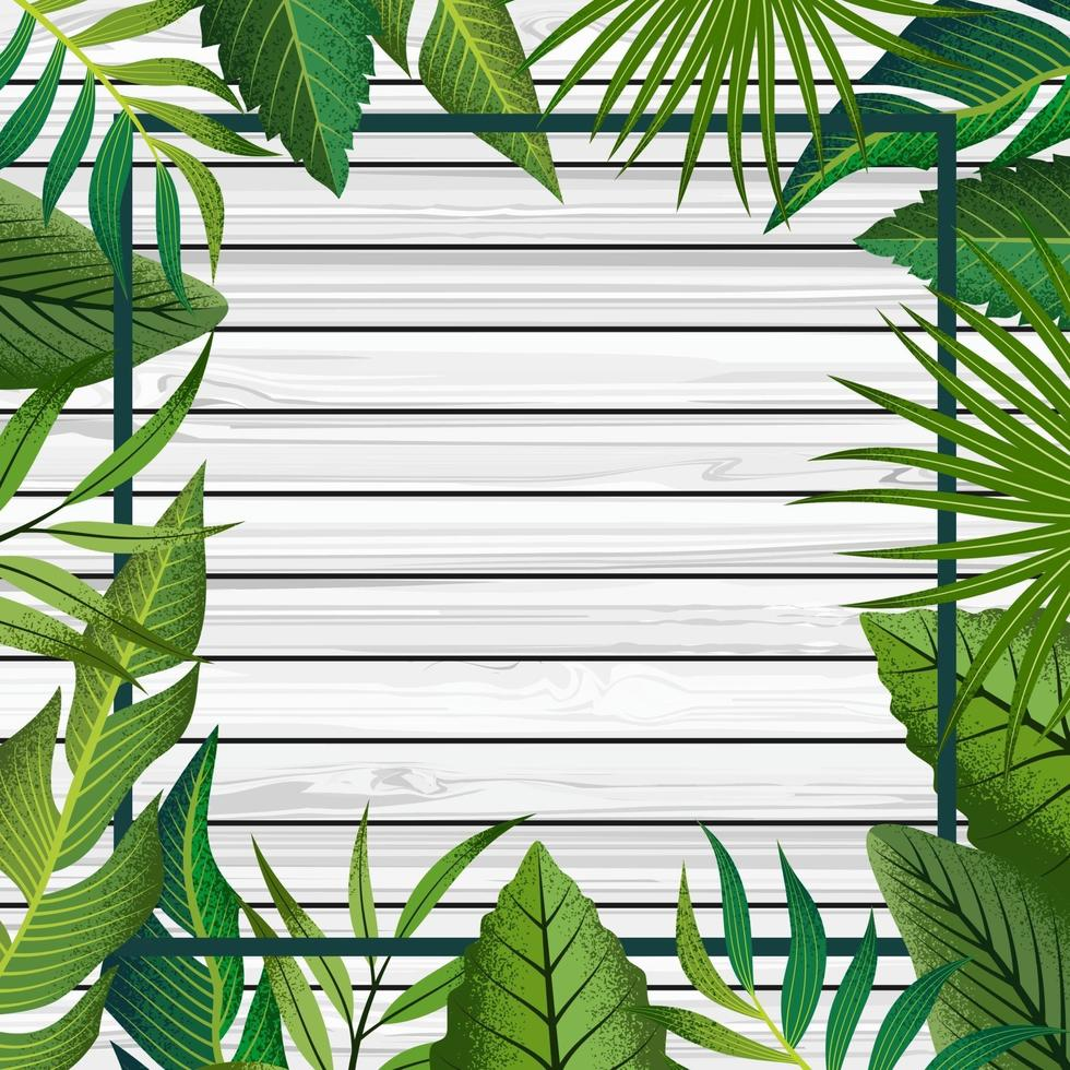 fundo do quadro tropical. vetor