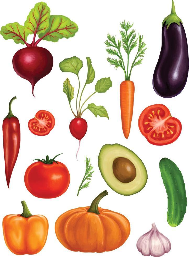 grande conjunto de vegetais aquarela sobre um fundo branco. ilustração com vegetais realistas vetor