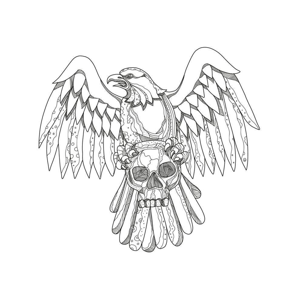 águia americana segurando o crânio vetor
