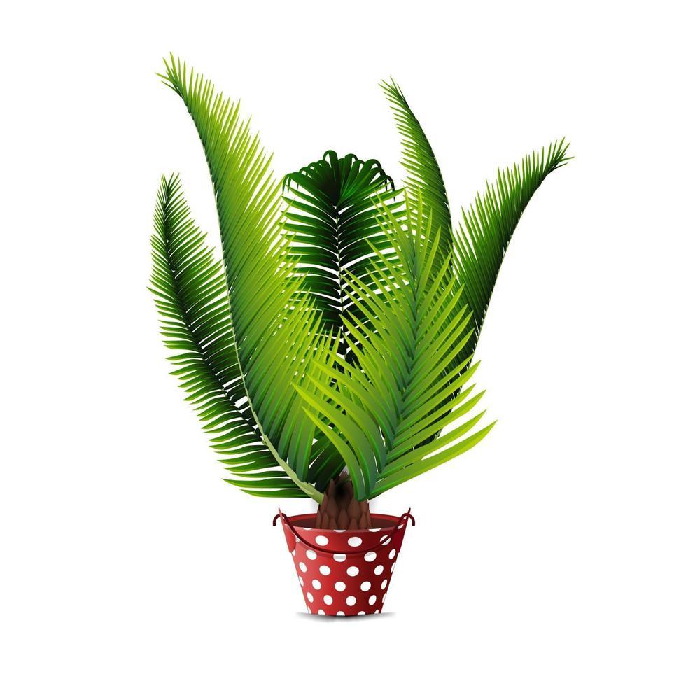 palmeira em vaso isolado no fundo branco para a sua criatividade vetor