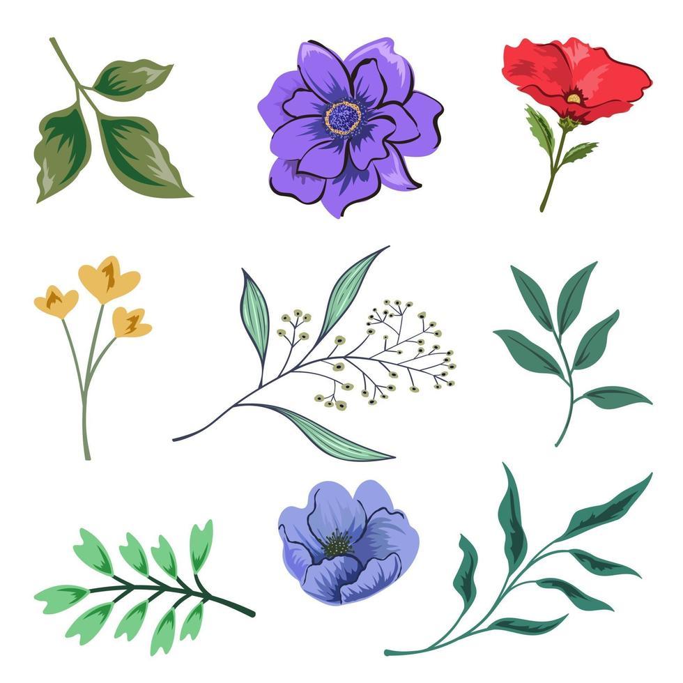 coleção de belas ervas e flores silvestres e folhas isoladas no fundo branco. vetor