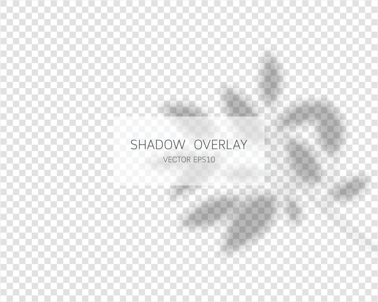 efeito de sobreposição de sombra. sombras naturais isoladas vetor