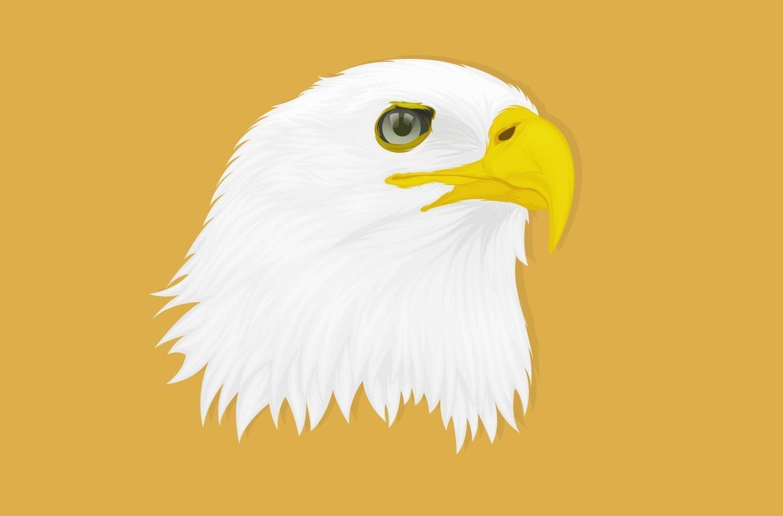 ilustração de uma águia com um olhar penetrante voltado para o lado, desenho à mão vetor