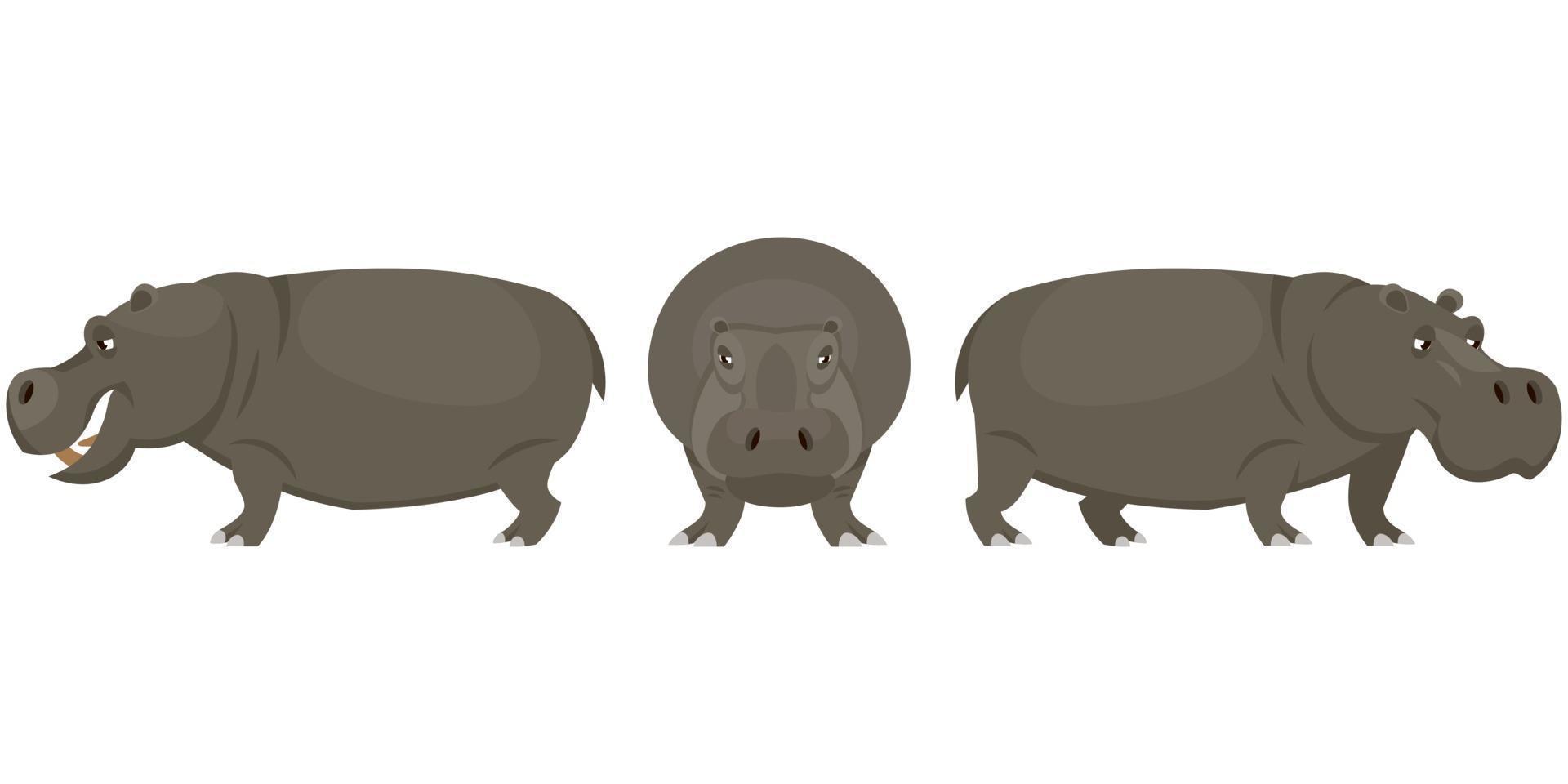 hipopótamo em diferentes poses. vetor