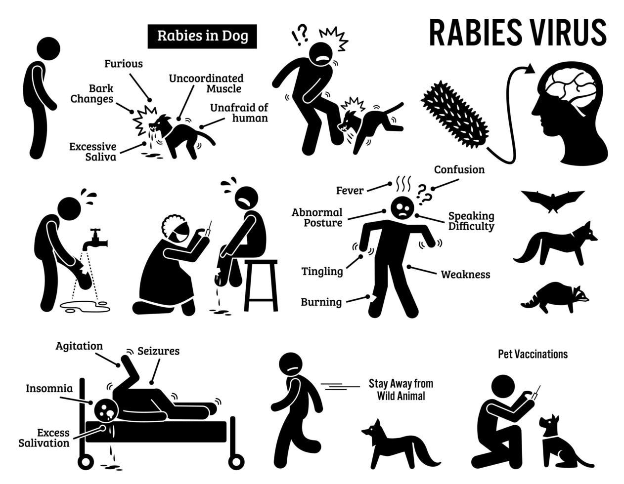 vírus da raiva em ícones de pictograma de figura de palito humano e animal. vetor