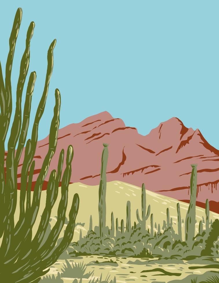 organ pipe cactus monumento nacional e reserva da biosfera localizados no arizona e no estado mexicano de sonora arte em pôster wpa vetor