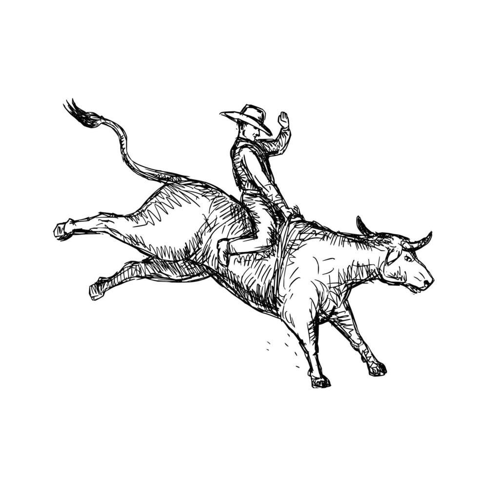 desenho de vaqueiro de rodeio em touros vetor