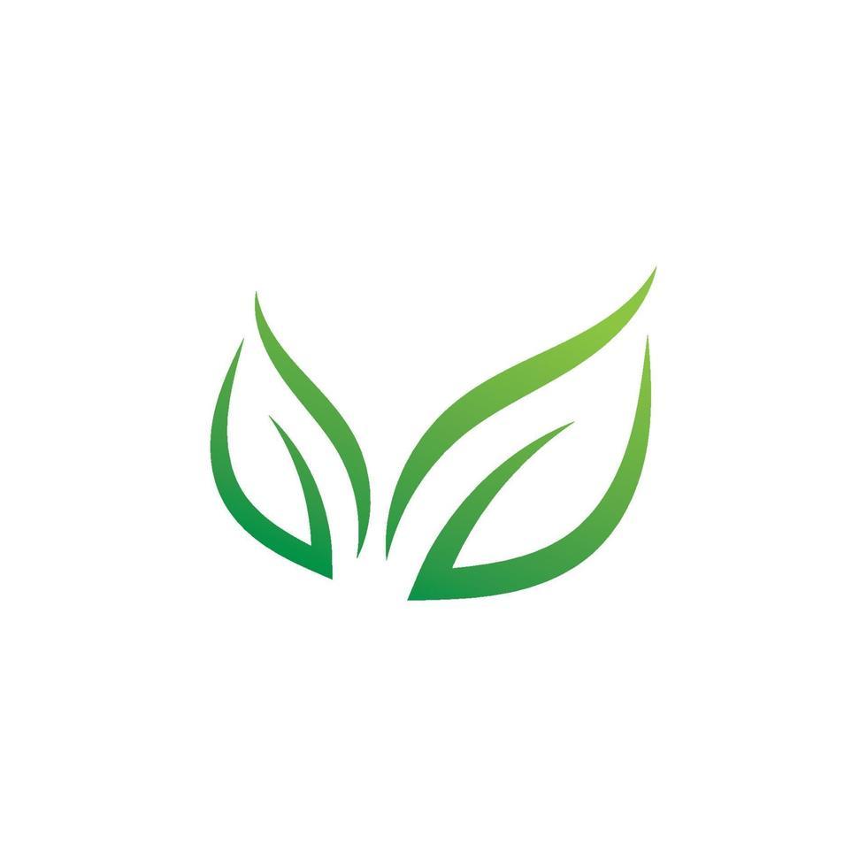 ícone de ecologia design de ilustração vetorial folha verde vetor