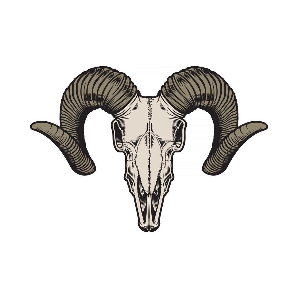 gráfico vetorial de crânio de cabra vetor