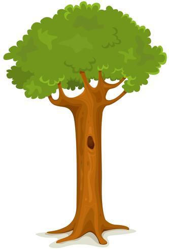 Árvore de verão ou primavera vetor