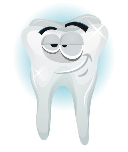 Personagem de dente feliz sorrindo vetor