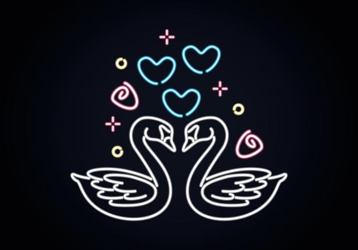 Amor cisne vetor