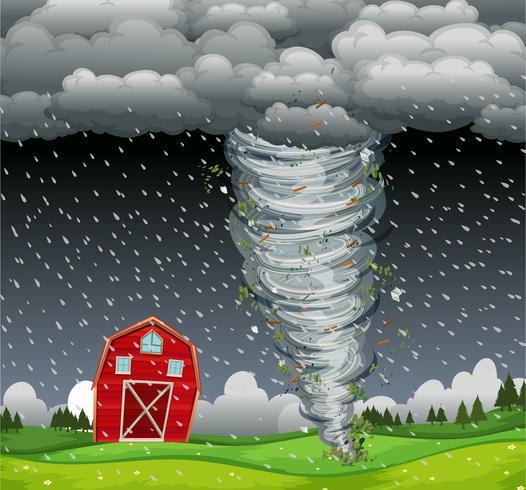 Ciclone atingiu a área rural vetor