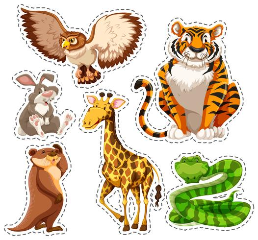 Conjunto de adesivos de animais selvagens vetor