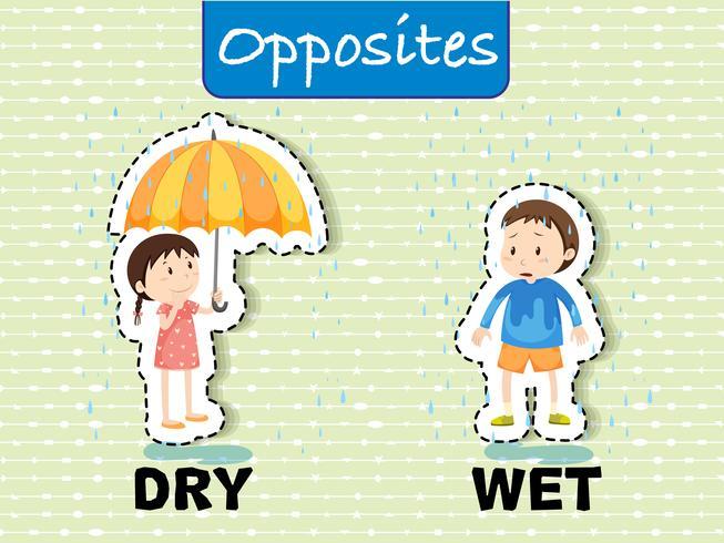 Palavras opostas para seco e molhado vetor