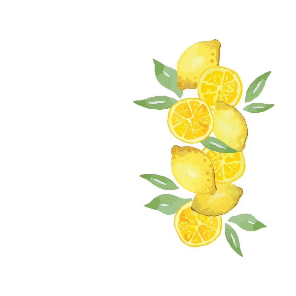borda lateral de limão em aquarela vetor