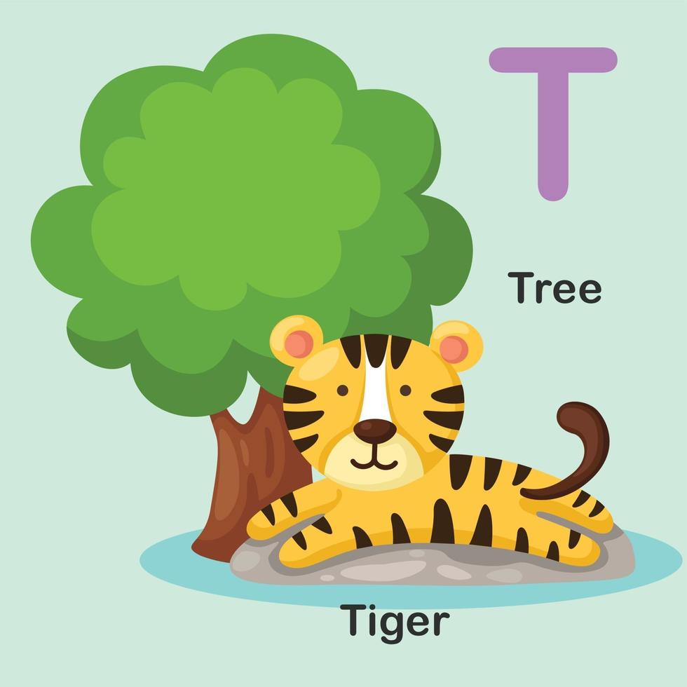 ilustração isolado animal alfabeto letra t-árvore, tigre vetor