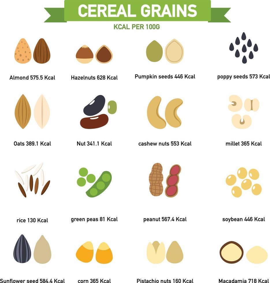 quilocaloria em grãos de cereais por infográficos de 100 gramas. vetor