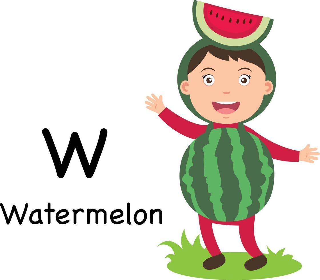 letra do alfabeto w-melancia, vetor