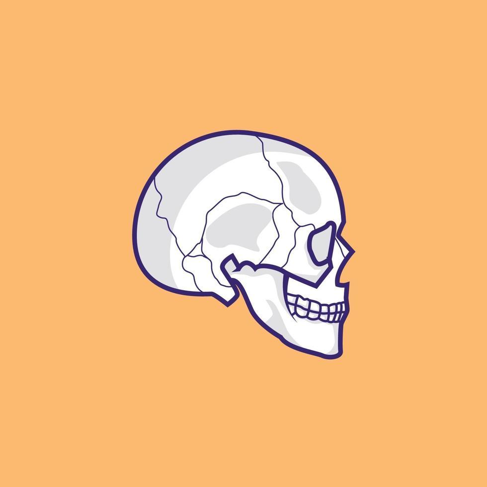 ilustração de estoque vetorial de crânio de vista lateral, design isolado de crânio vetor