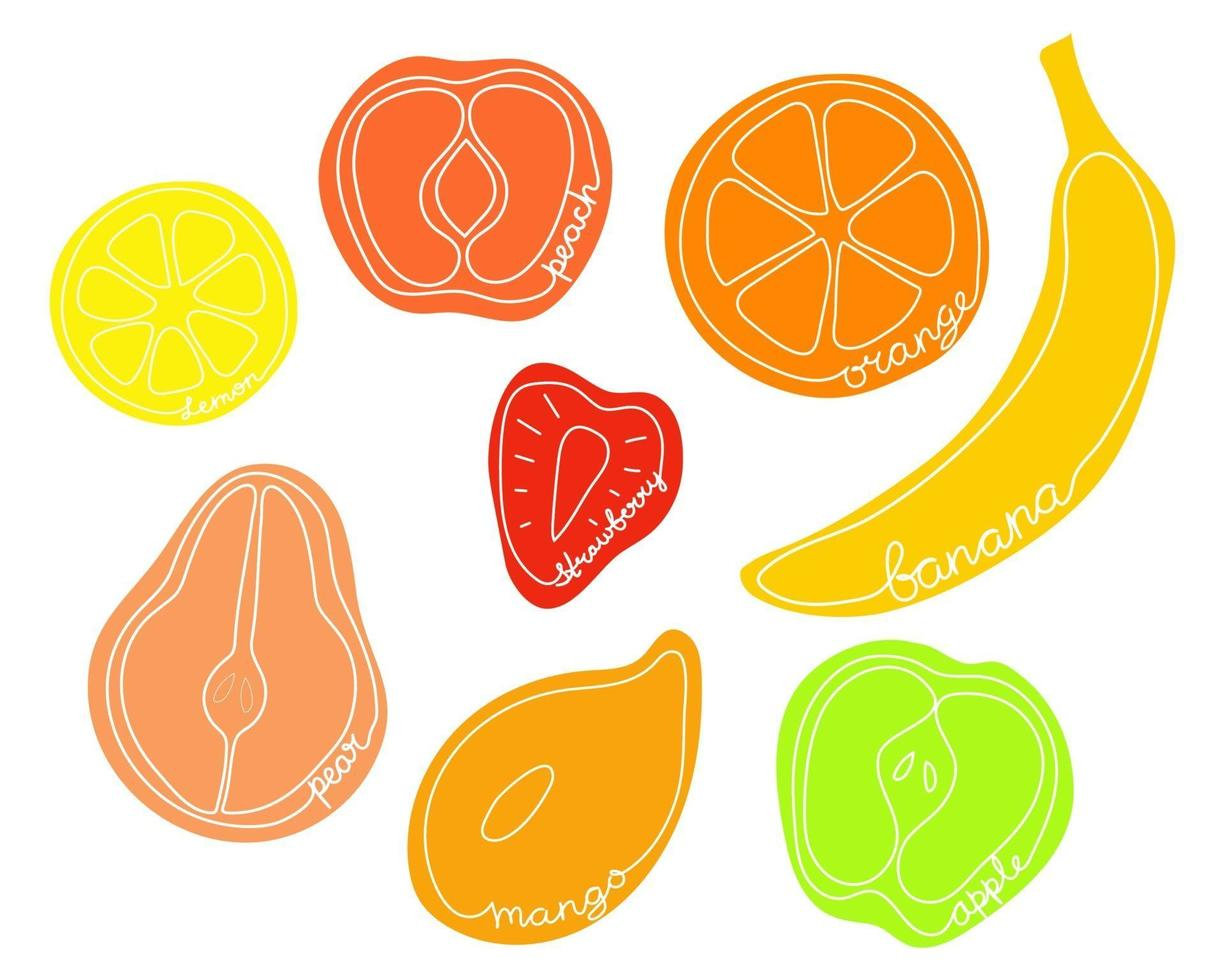 frutas metades em fundo branco com nomes. conjunto de frutas cortadas vetor