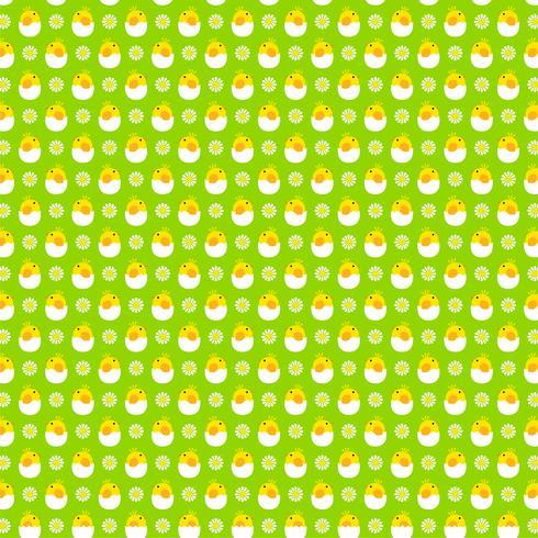 padrão de pintinho de ovo de incubação em fundo verde vetor
