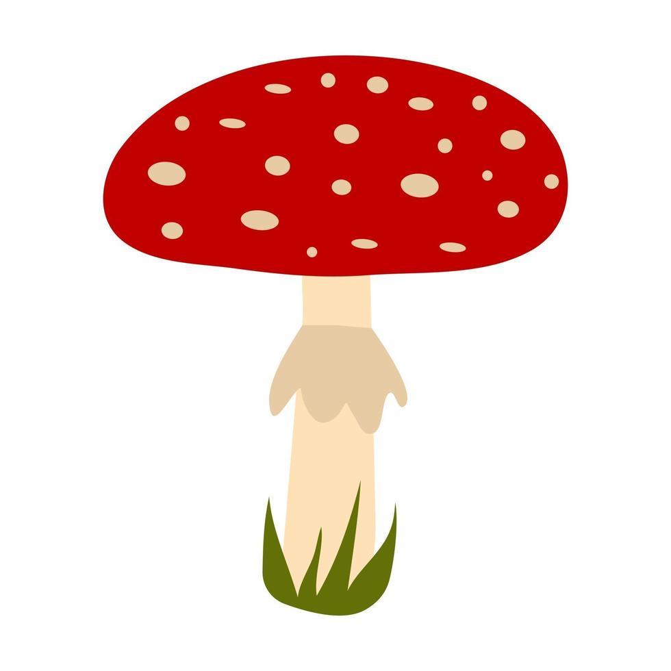 Cogumelo amanita desenhado à mão vetor