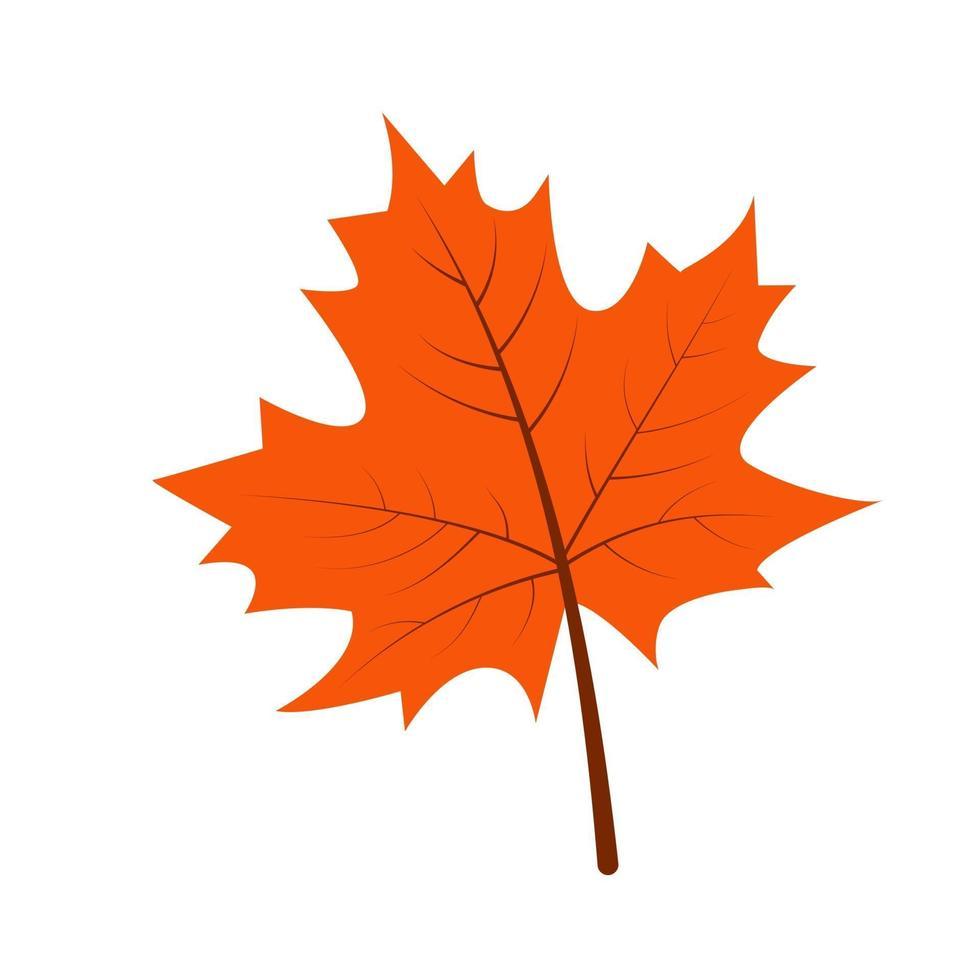 folha de bordo de outono em estilo desenhado à mão vetor