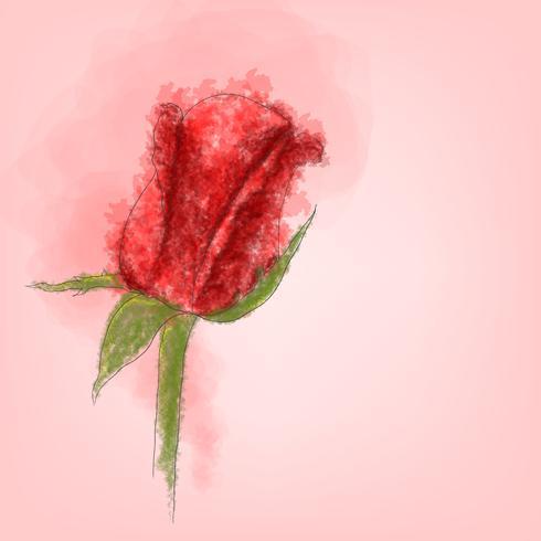 Único vector rosa vermelha com estilo aquarela