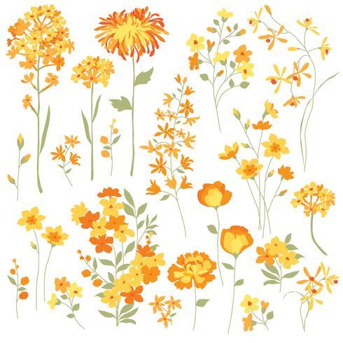 Mão desenhada flores amarelas vetor