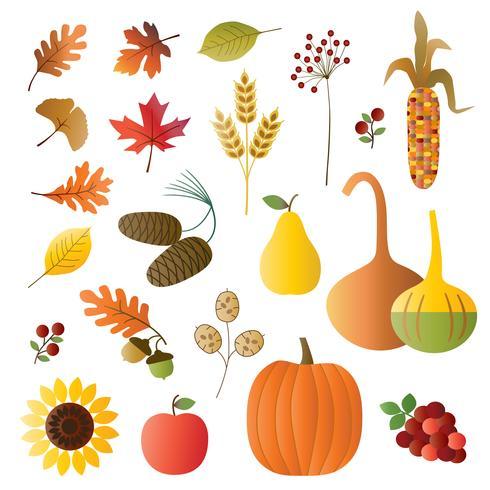 ilustrações de frutas e folhagens de outono vetor