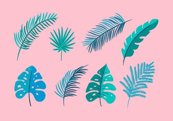 Conjunto de vetor isolado plana folhas de palmeira, exóticas em fundo rosa