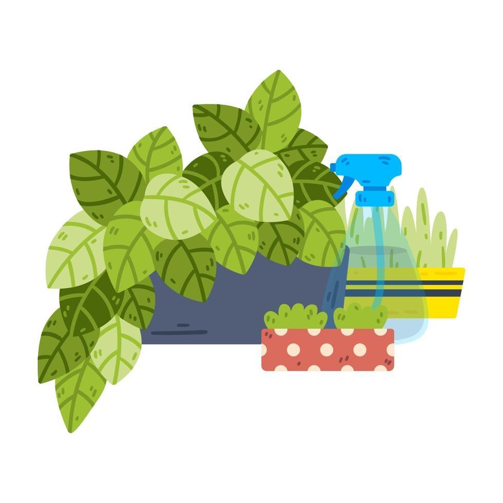 plantas de interior em vasos. garrafa de spray para água. vetor