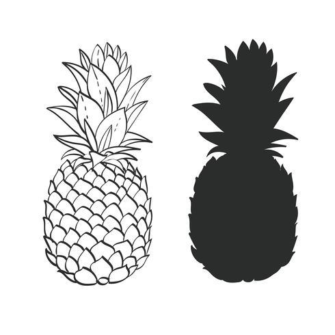 Abacaxi preto e branco vetor