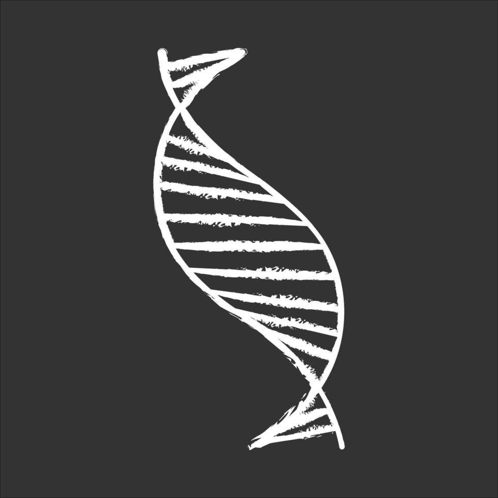 ícone de giz de fita espiral de DNA vetor